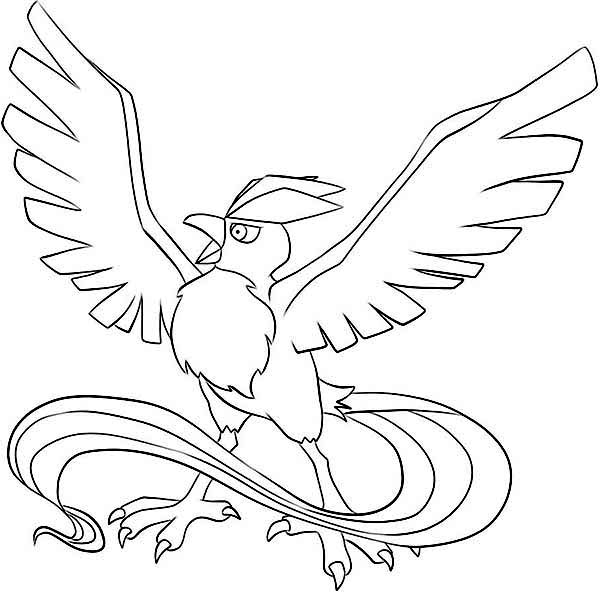 How To Draw Articuno Bird Coloring Page