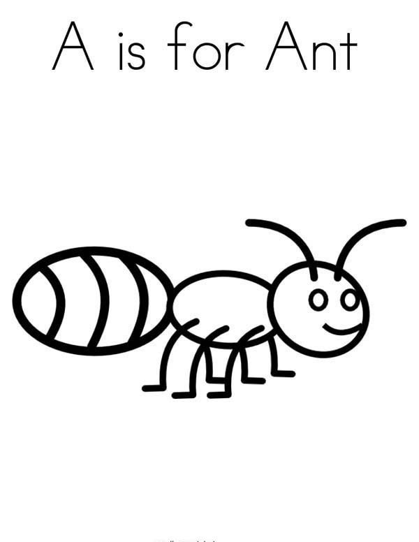 Bugs, : A is for Ant in Species of Bugs Coloring Page