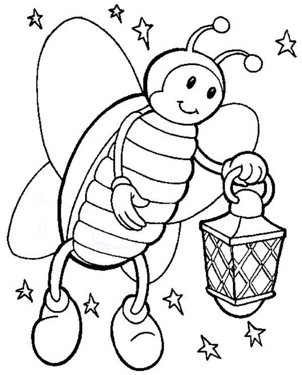 Bugs, : Beautiful Firefly is Species of Bugs Coloring Page
