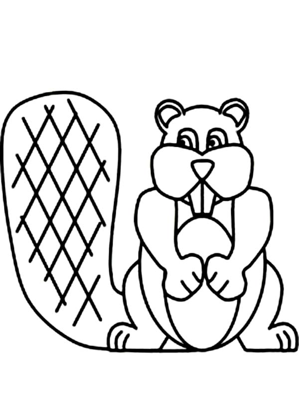 Beaver, : Beaver Has Strong Teeth Coloring Page