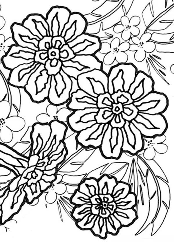 Carnation Flower, : Carnation Flower Bouquet Coloring Page