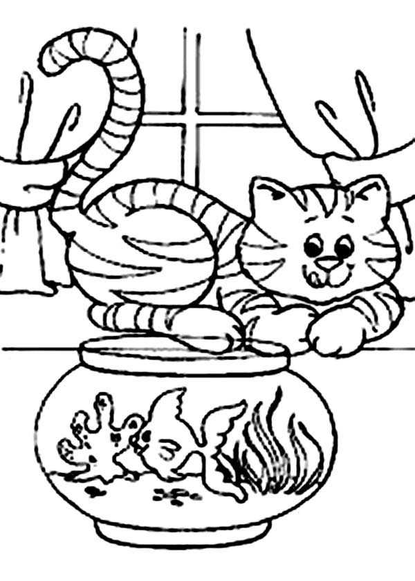 Cat, : Cat Would Like to Eat the Fish in the Fish Tank Coloring Page