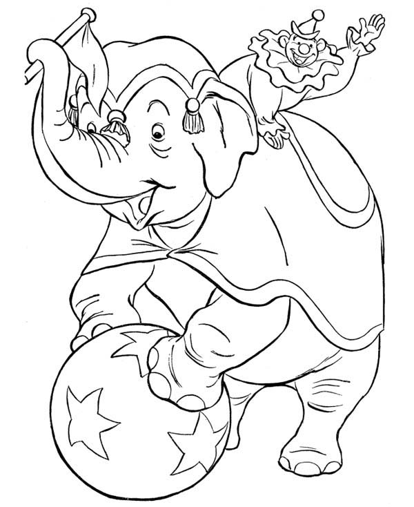 Circus, : Circus Elephant and Circus Clowns Coloring Page