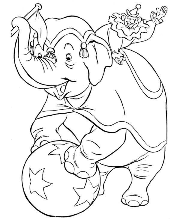 Circus Elephant Balancing On Ball Coloring Page