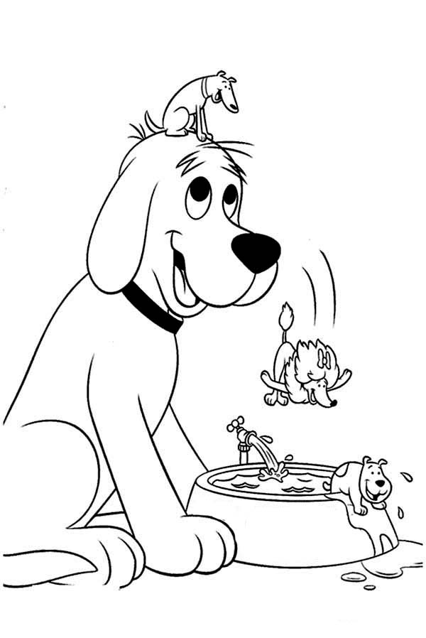 Clifford the Big Red Dog, : Clifford Friends Jump from Clifford the Big Red Dog Head to Round Pool Coloring Page