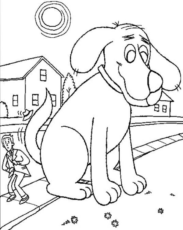 Clifford the Big Red Dog, : Clifford the Big Red Dog Tail Bothering a Pedestrian Coloring Page