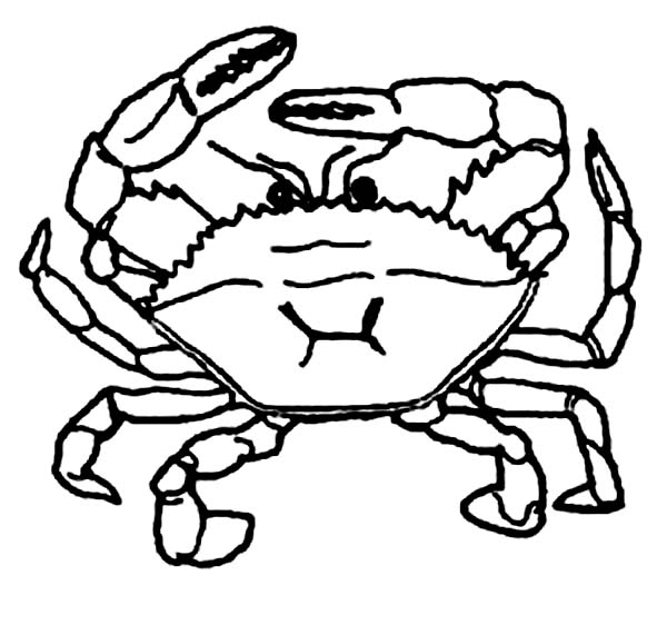 Crab, : Crab Defend Himself with Two Pair of Claws Coloring Page