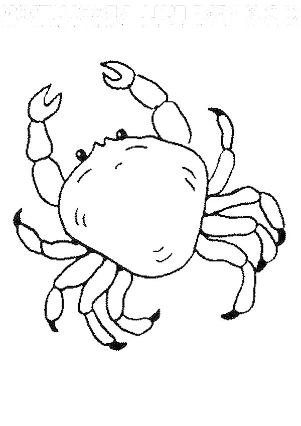 Crab, : Crab Picture Coloring Page
