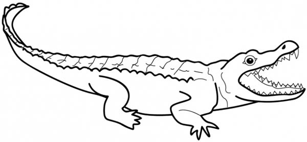 Crocodile, : Crocodile Attack Coloring Page