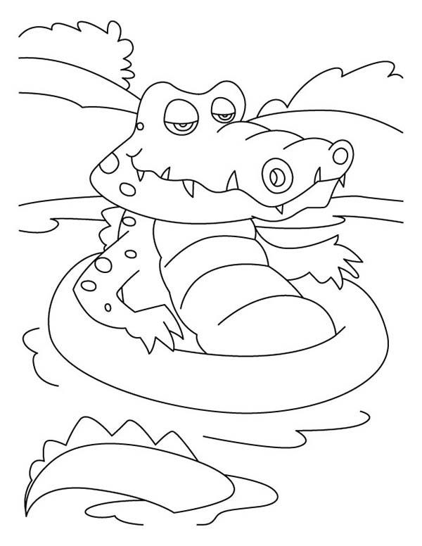 Crocodile, : Crocodile Falling Asleep Coloring Page