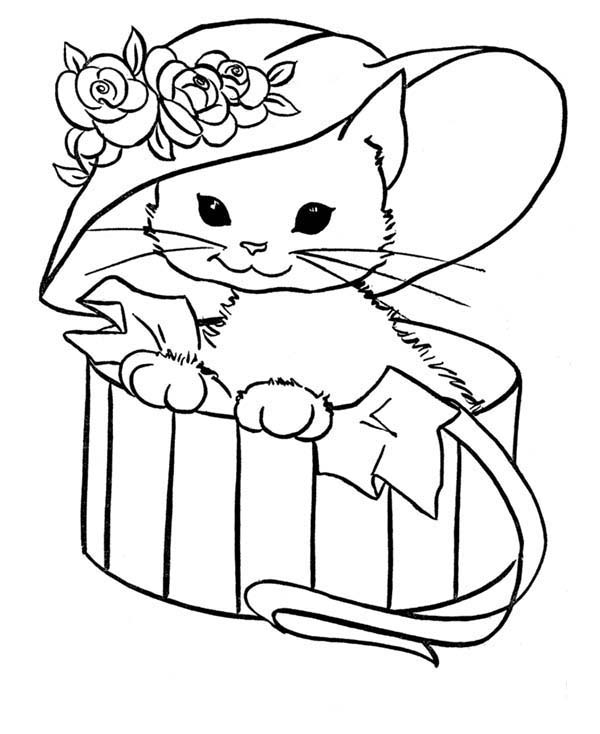 Cat, : Cute Cat Wear Cute Flowered Hat Coloring Page