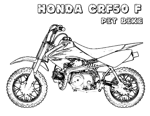 dirt bike honda crf50f pit bike coloring page