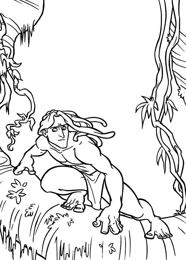 Tarzan, : Disney Tarzan Slides on Tree Coloring Page