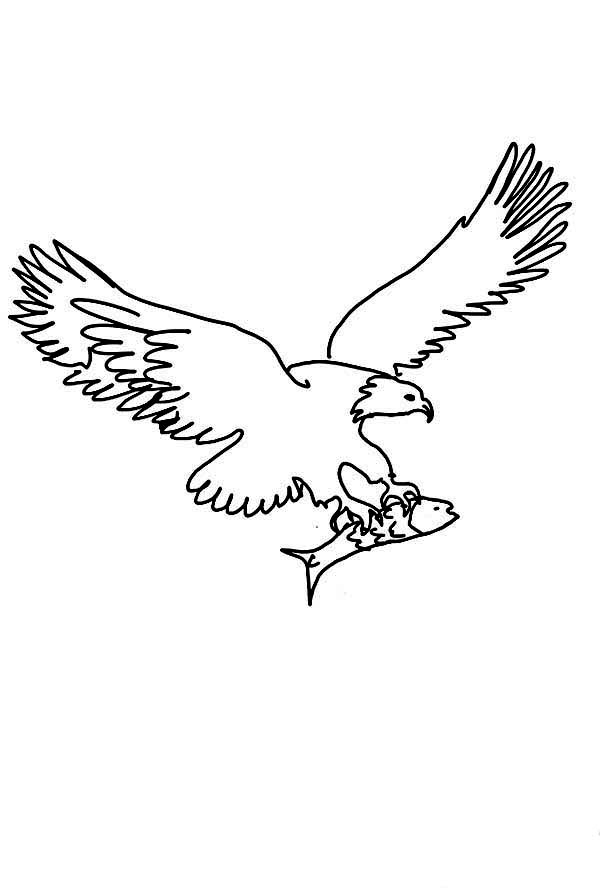 Eagle, : Eagle Carrying Fish from Sea Coloring Page