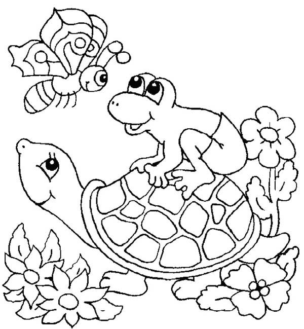 Turtle, : Frog Jump Up to Turtle Shell Coloring Page
