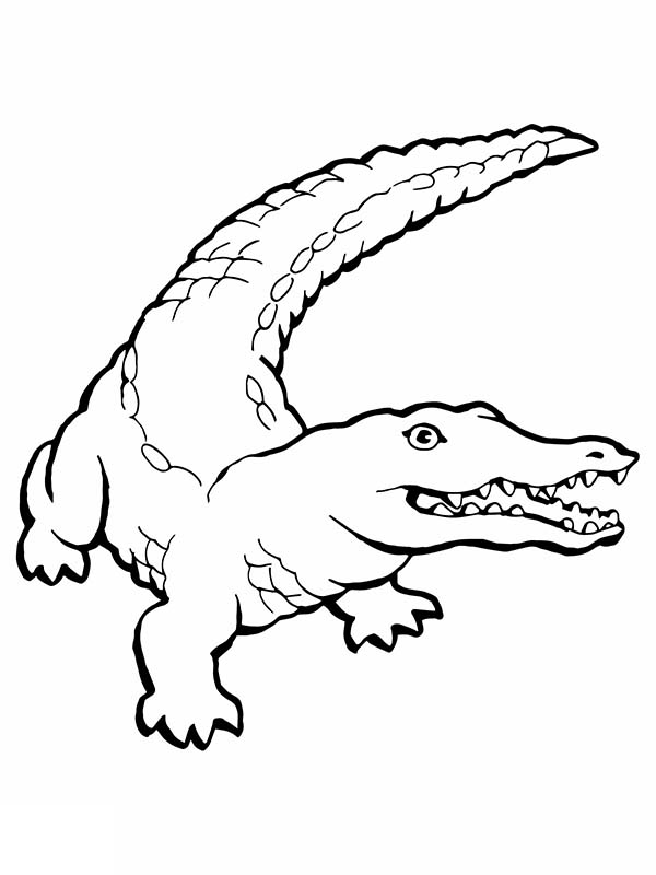 Crocodile, : Human Killer Crocodile Coloring Page
