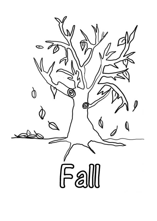 Autumn, : Leaves in Autumn Coloring Page for Kids