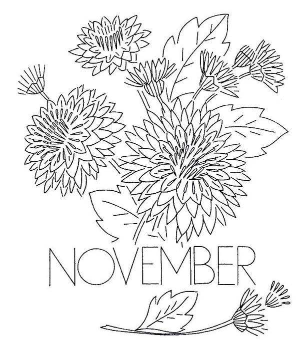 November chrysanthemum coloring page