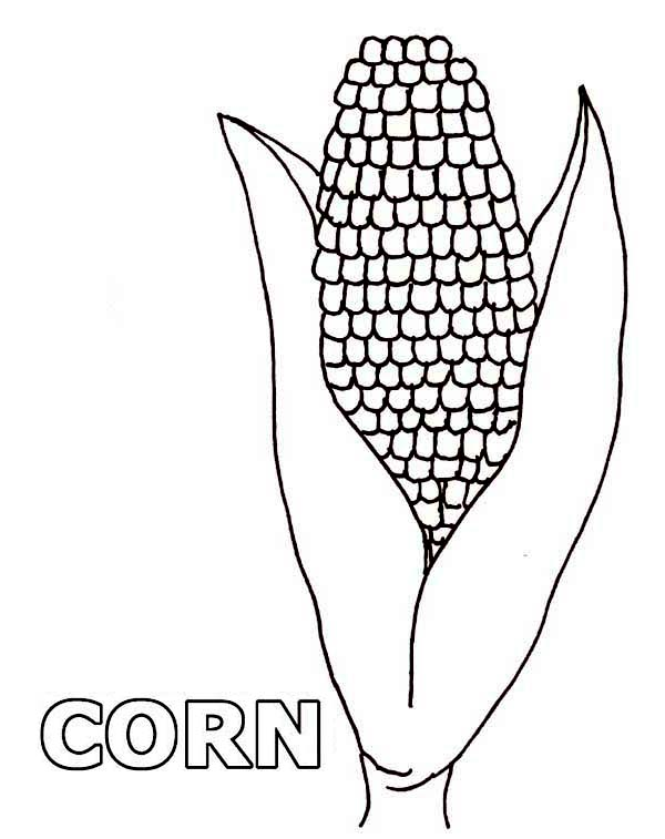 One Beuatiful Corn Coloring Page | Coloring Sun