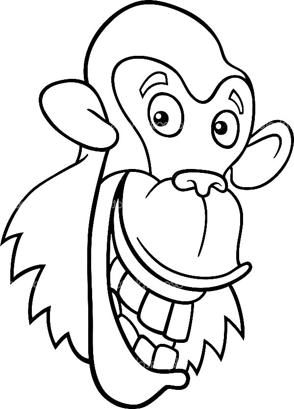 Chimpanzee, : chimpanzee for coloring book