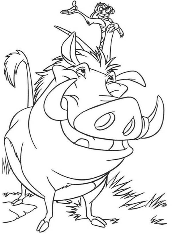 Timon and Pumbaa, : Picture of Timon and Pumbaa Coloring Page