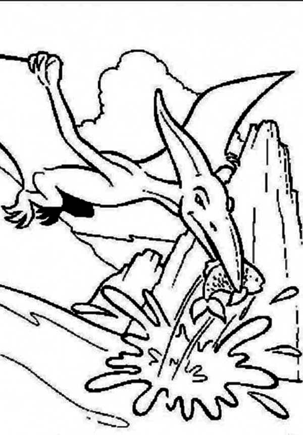 Pteranodon, : Pteranodon Catching Fish Coloring Page