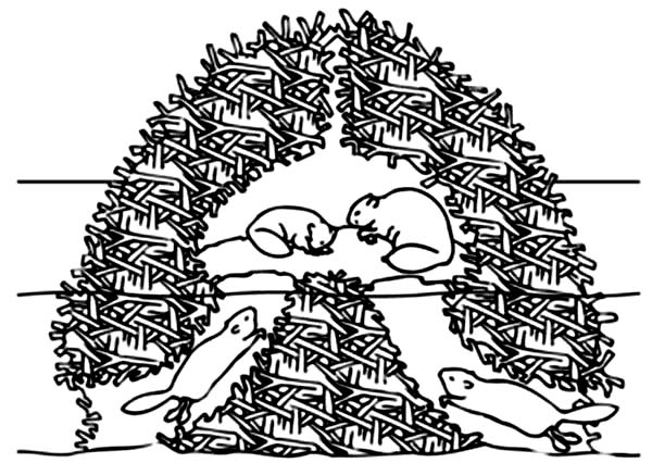 Beaver, : Slug Beaver Nest Coloring Page