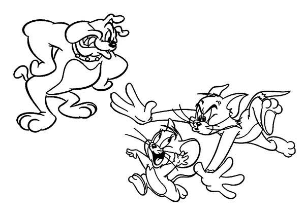 Tom and Jerry, : Spike is Mad Watching Jerry Being Chased by Tom in Tom and Jerry Coloring Page