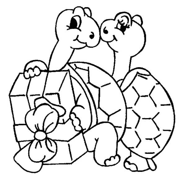 Turtle, : Turtle Receipt Present from Her Husband Coloring Page