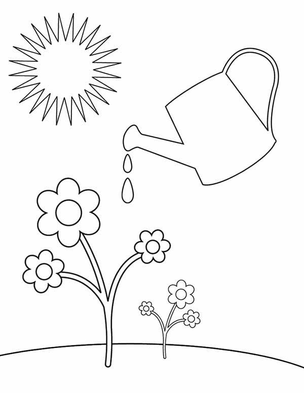 Watering Can For Watering Plants Coloring Page Coloring Sun