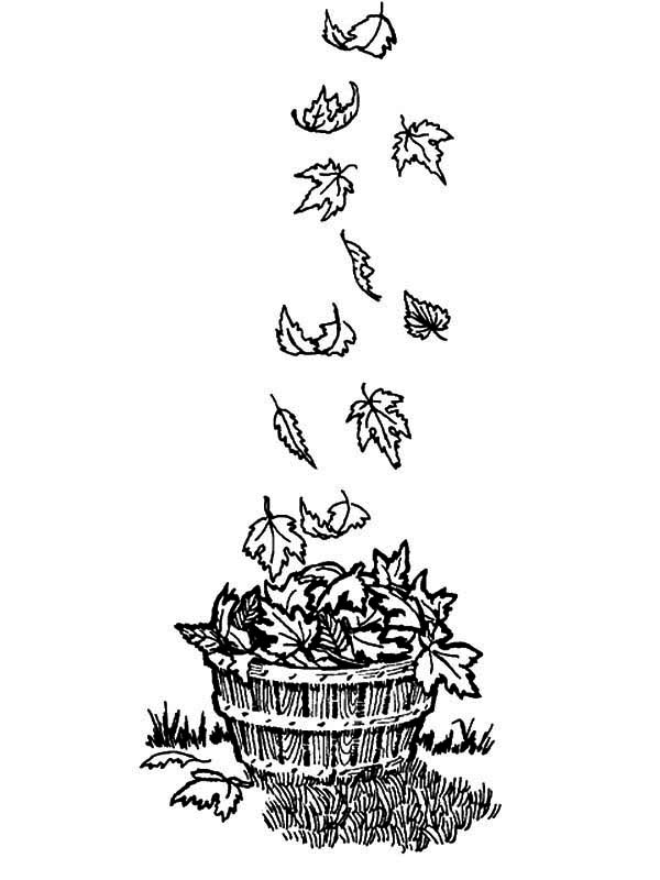 Autumn, : Wooden Bucket Full of Autumn Leaf Coloring Page
