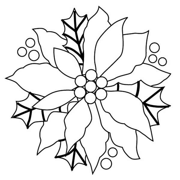 Poinsettia Day, : Gorgeous Sketch of Poinsettia for Poinsettia Day Coloring Page