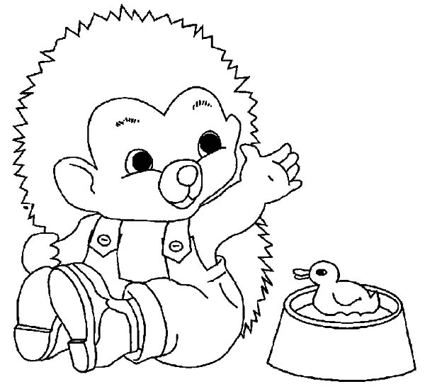 Hedgehog, : Baby Hedgehog be Friend with Duckling Coloring Pages
