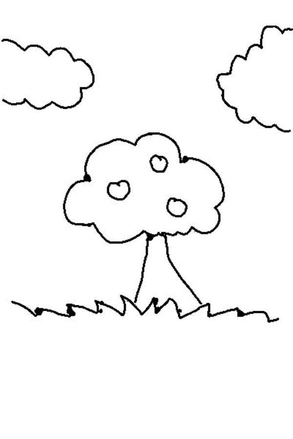 Days Creation, : Days of Creation Plants and Trees Coloring Pages