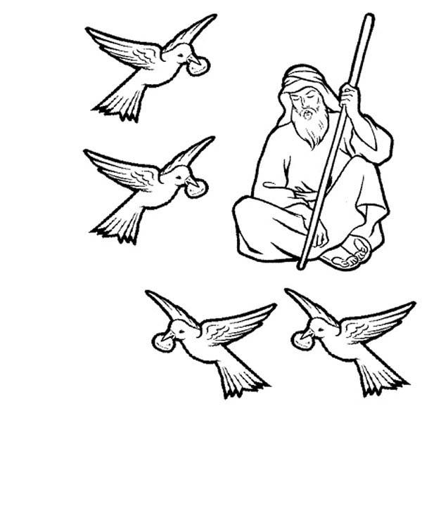 Elijah, : Fed by Ravens Prophet Elijah Coloring Pages
