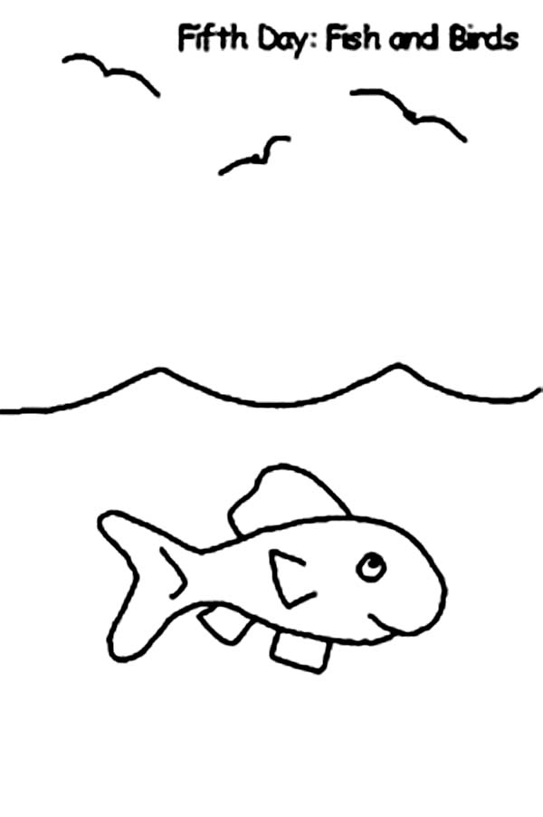 Days Creation, : Fifth Days of Creation Fish and Birds Coloring Pages