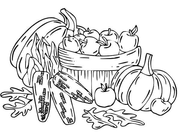 Harvests, : Fruit Harvests Coloring Pages