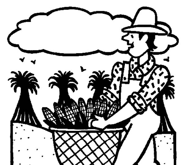 Harvests, : Gardening Harvests Coloring Pages