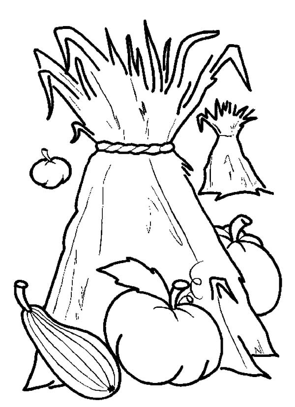 Harvests, : Harvests Coloring Pages for Kids