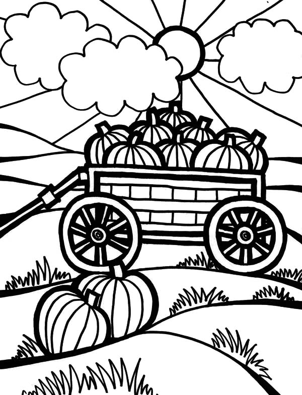 Harvests, : Harvests Pumpkins on Carriage Coloring Pages