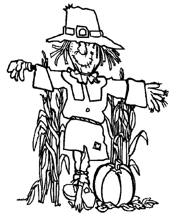 Harvests, : Harvests Scarecrow Pumpkin Coloring Pages