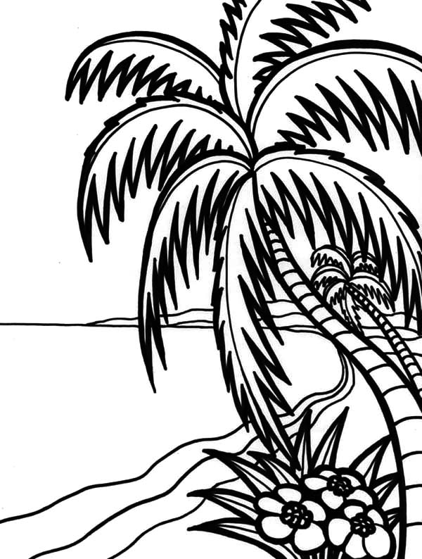 Hawaii, : Hawaii Amazing Beach Coloring Pages