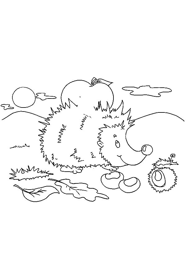 Hedgehog, : Hedgehog Eating Dry Leaves Coloring Pages