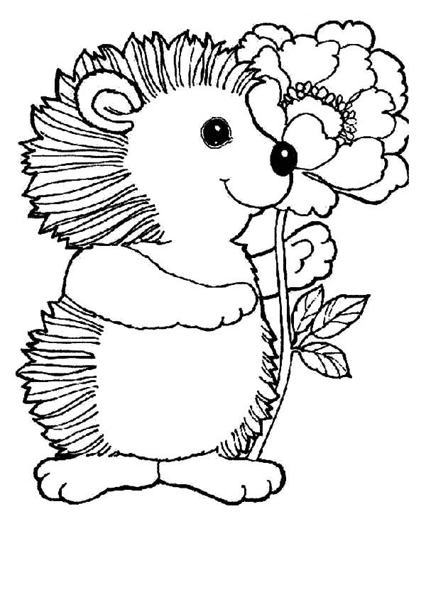 Hedgehog, : Hedgehog Love Beautiful Flower Coloring Pages