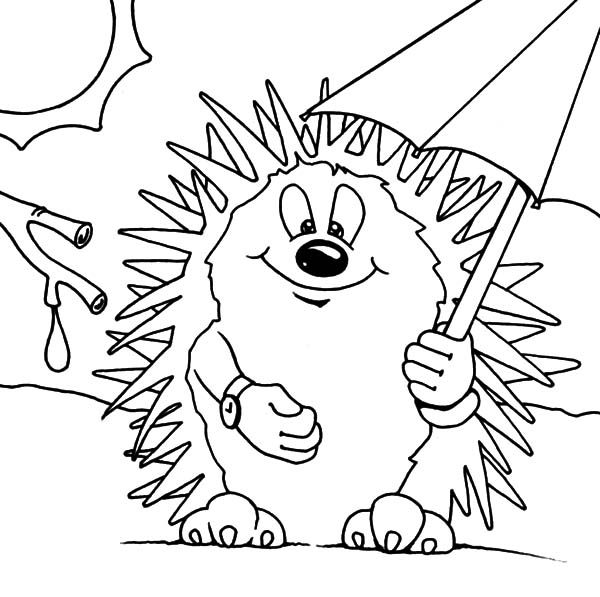 Hedgehog, : Hedgehog Take Cover Under Umbrella Coloring Pages
