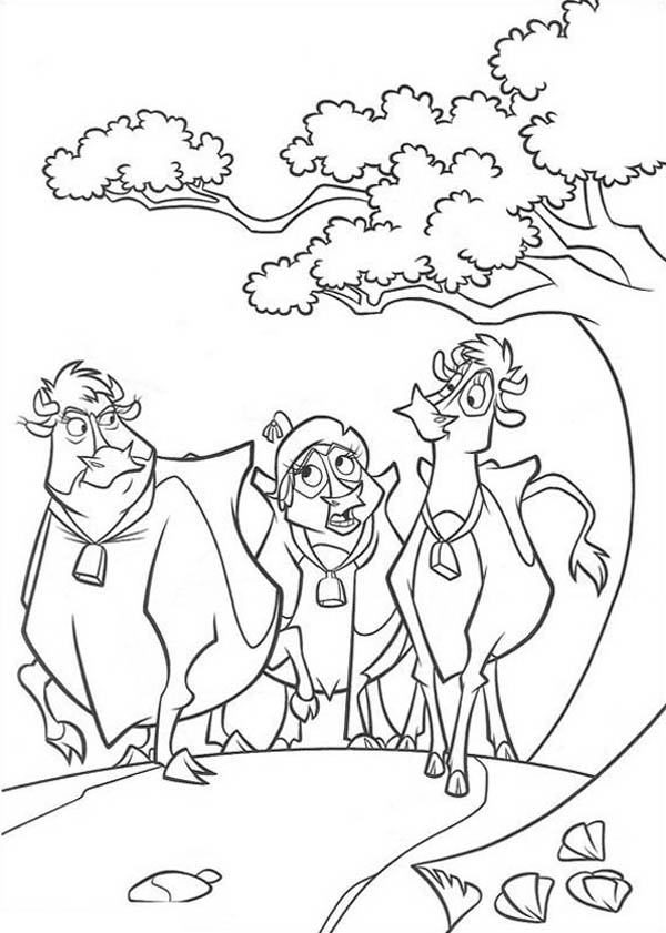 Home On The Prairie, : Home on the Prairie Cows Walking Together Coloring Pages