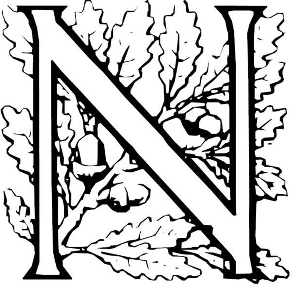 Letter n, : Learn Letter N for Nut Coloring Page