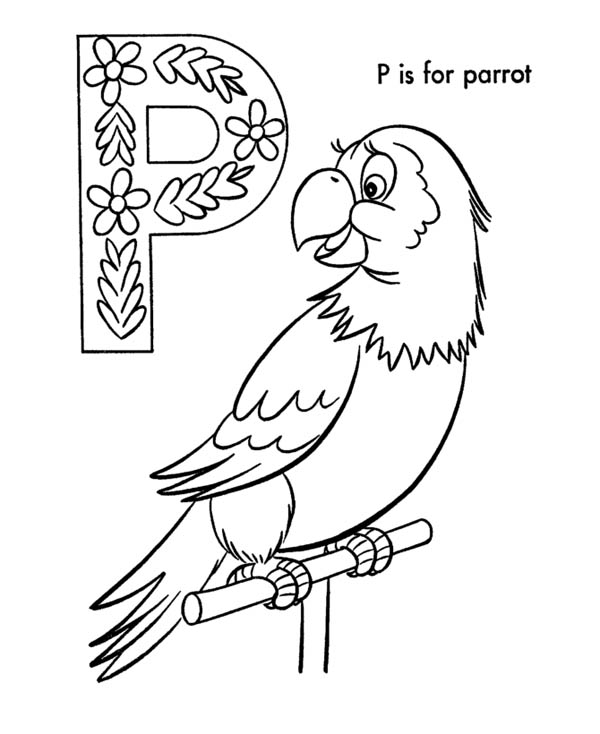 Letter p, : Letter P is for Parrot Coloring Page