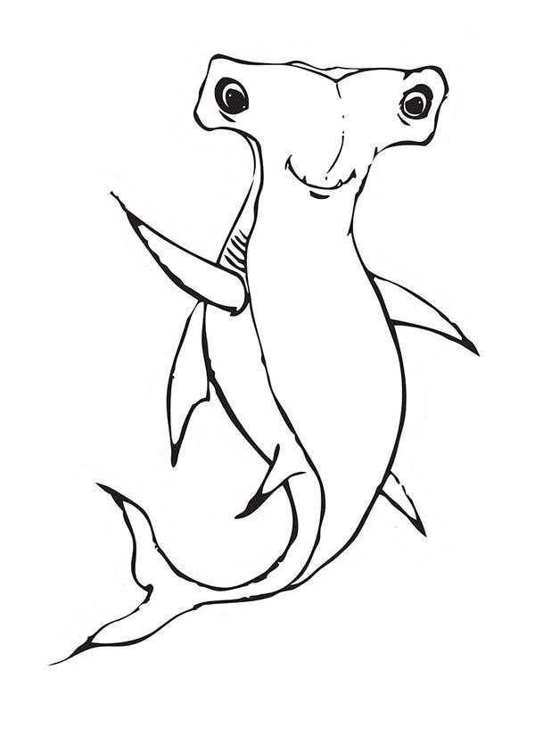 manta ray coloring pages - photo#23
