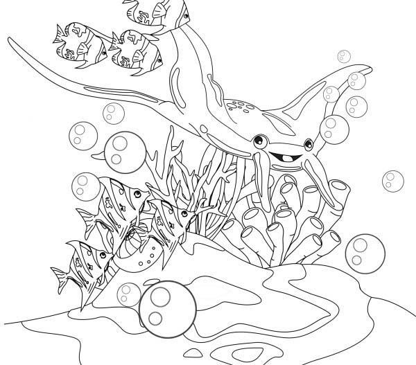 Manta Ray, : Manta Ray and Little Fish Coloring Pages